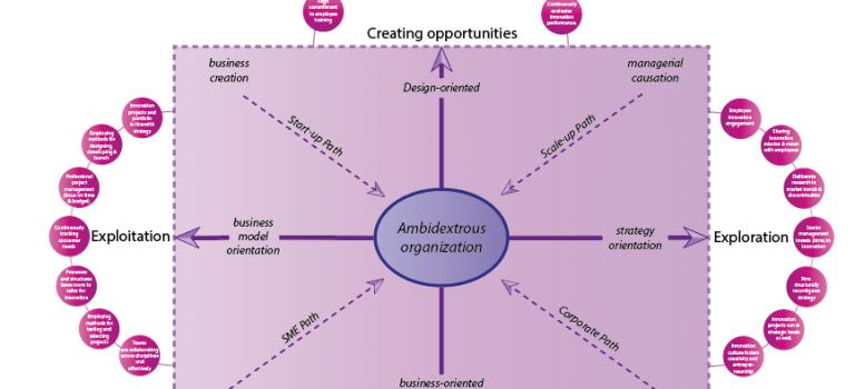 Ambidextruous Organization